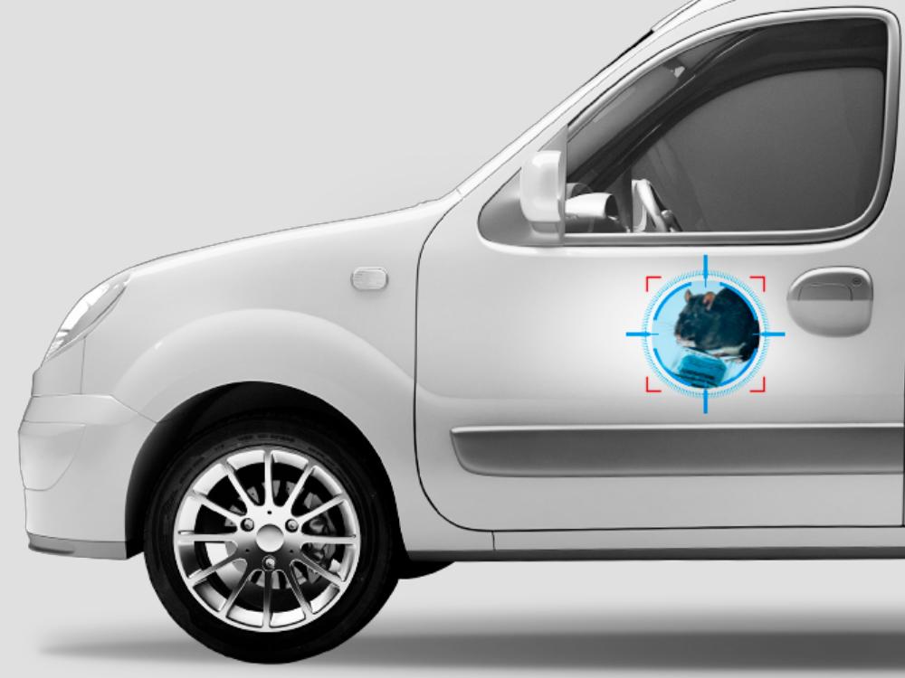 Adhésif pour votre véhicule de fonction – Collection nuisibles: Le Rat