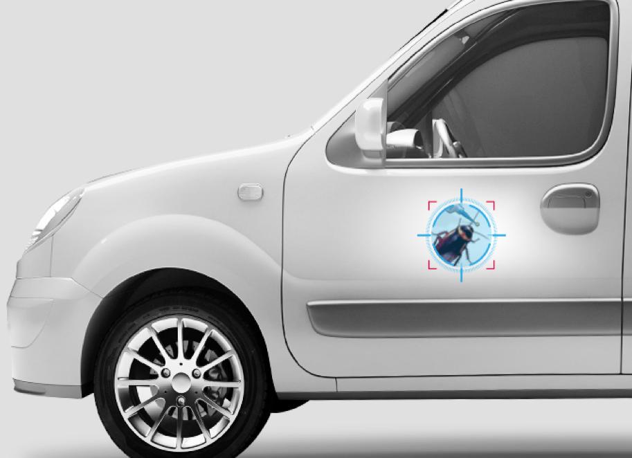 Adhésif pour votre véhicule de fonction – Collection nuisibles: La Blatte